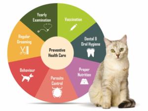 kenosha preventive vet care, preventive veterinary care kenosha, veterinary preventive care kenosha